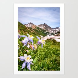 High Country Summer Wildflowers Crested Butte Colorado Mountain Landscape Art Print