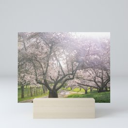 Spring cherry blossom Mini Art Print