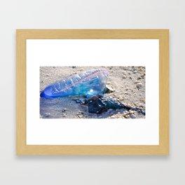 Jelly Fish I Framed Art Print