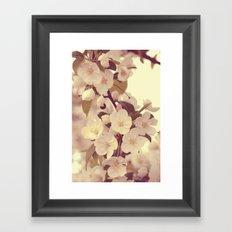 Floral 05 Framed Art Print