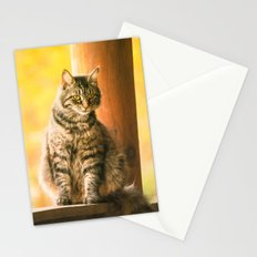 I Love Lucy Stationery Cards