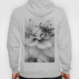 FLOWER MACRO - 11118/1 Hoody