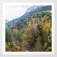 forrest Art Prints featuring Forrest  by Veronika