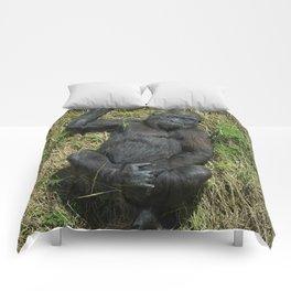 Sunbathing Gorilla Baby Shufai Comforters