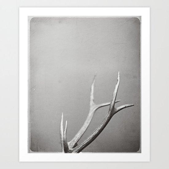 fig. 01 | antlers Art Print