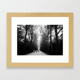The walk to Château de Chenonceau Framed Art Print