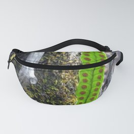 the new within Fanny Pack