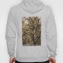 Tree of Hearts - Sepia Hoody