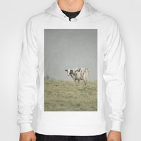cows Hoodies featuring Moo Cows by Pure Nature Photos