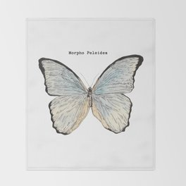 Morpho Peleides Throw Blanket