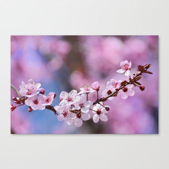 Pink...... Canvas Print
