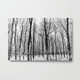 Haunter Of The Woods Metal Print