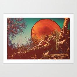 Burnt Sun Art Print