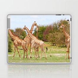 Giraffe family, Africa wildlife Laptop & iPad Skin