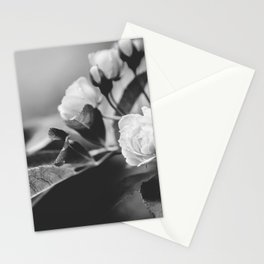 Mini Roses Black White Stationery Cards