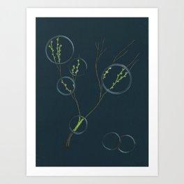 Spring's Rings Etc. Art Print