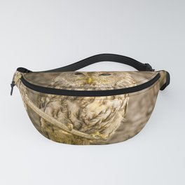 Perched Tawny Owl Fanny Pack