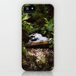THE RAINFOREST II iPhone Case