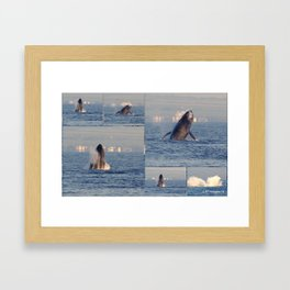 """""""baby whales tales""""- Mauii Framed Art Print"""