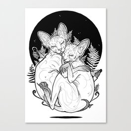 (un)loved sphynxes Canvas Print