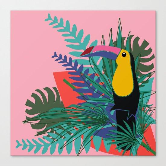 Toucan pink Canvas Print