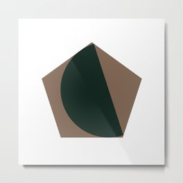 #302 Pretty fitting – Geometry Daily Metal Print