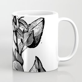 Cobaea scandens 1899 Coffee Mug