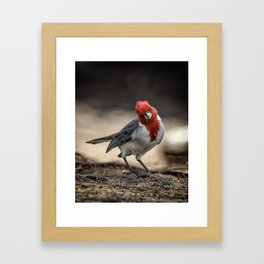 Who is Checking Out Who Framed Art Print