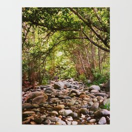 Dry Creek Bed on the West Fork Poster