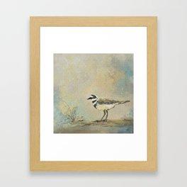 Shore Bird 2945 Framed Art Print