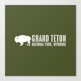 Bison: Grand Teton, Wyoming Canvas Print