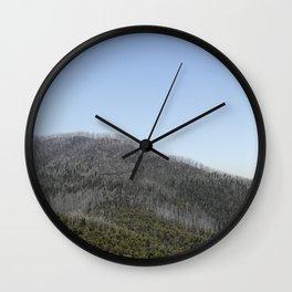 Scenic Detail Wall Clock