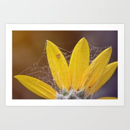 Crawling With Spiders Art Print