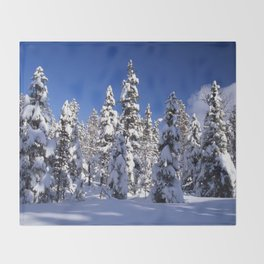 Snow covered trees in the forest. Winter day with blue sky. Throw Blanket
