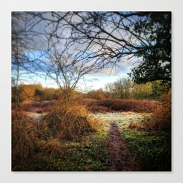 Out of the Woods and Back to the Frosty Path Canvas Print