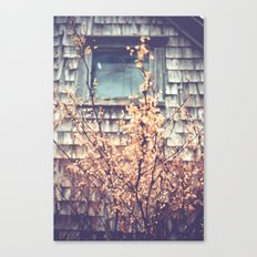 Window Canvas Print