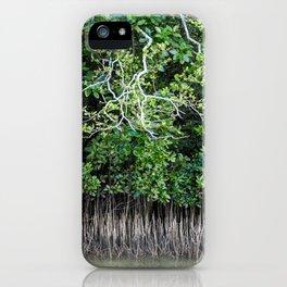 Daintree Rainforest- Mangroves iPhone Case