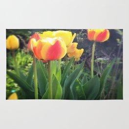Spring Tulips in Bloom Rug