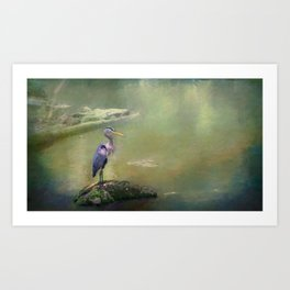 Proud Blue Heron Art Print