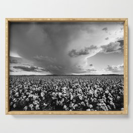 Tall Cotton - Storm Over Cotton Field in Oklahoma in Black and White Serving Tray