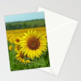 Yellow Sunflowers in Green Field Stationery Cards