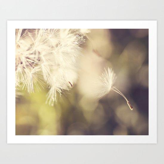 Broken Dandelion, Bokeh Art Print