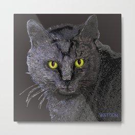 Gray Tabby Metal Print