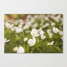 Tiny Flower Canvas Print