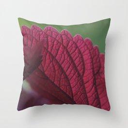 Coleus Pink II Throw Pillow