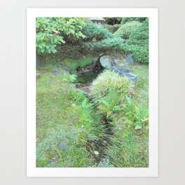 Japanese Tea Garden Hidden Stream Art Print
