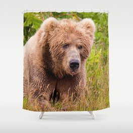 Brown Bear Kodiak Shower Curtain