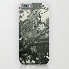 Vintage Print - The Birds of Tasmania (1910) - Frogmouth at Nest with Young iPhone Case