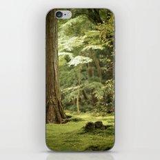 Ohara Jizo, Kyoto iPhone & iPod Skin