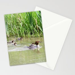 MERGANSER FAMILY - BABY RIDING ON MOM'S BACK Stationery Cards